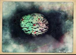 Brainy cloud4